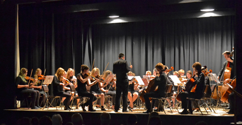 south gloucetsershire youth orchestra - south cotswold youth orchestra